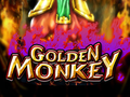 Golden Monkey