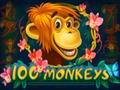 100 Monkeys