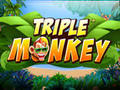Triple Monkey -Playtech