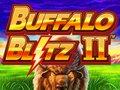 Buffalo Blitz 2